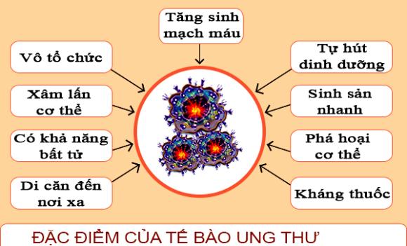 Dac diem cua te bao ung thu (1)