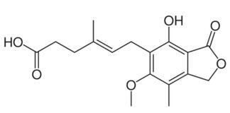 Thuoc-Mycophenolate-mofetil-la-thuoc-gi-Thong-tin-lieu-va-gia-thuoc-Mycophenolate-mofetil